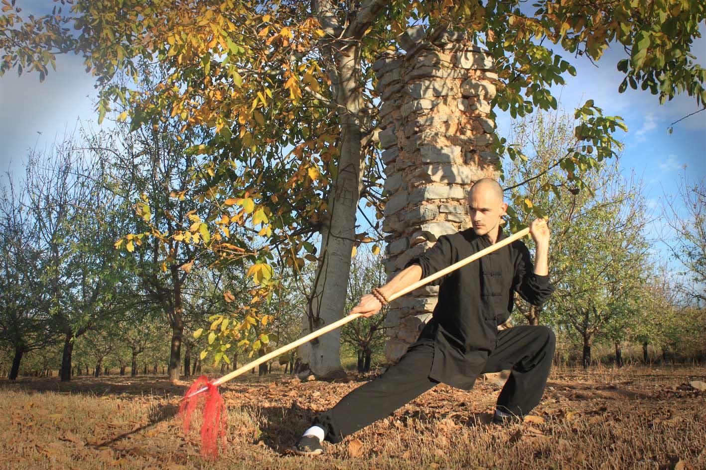 Kung fu Choy Li Fut en Zaragoza - Kung Fu Zaragoza